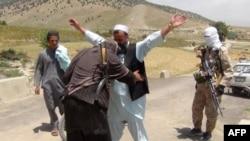 شماری از جنگجویان طالبان در ولایت پکتیا