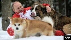 Путин Баффи һәм Конни белән