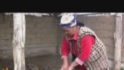 Hard-Scrabble Life In A Kazakh Village