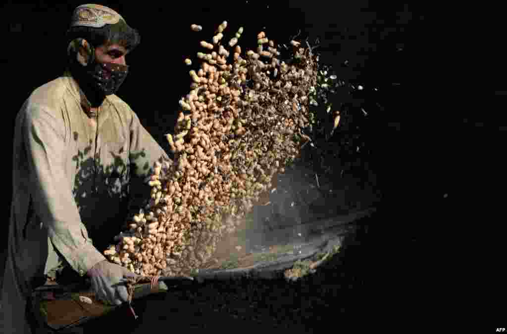 An Afghan laborer separates the loose husks from peanuts at a factory in Jalalabad. (AFP/Noorullah Shirzada)