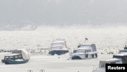Led na Dunavu, 10. veljače 2012.