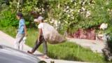 Turkmenistan. Children collect plastic bottles in a bag in the district. Trash bins. Ashgabat. June 2021