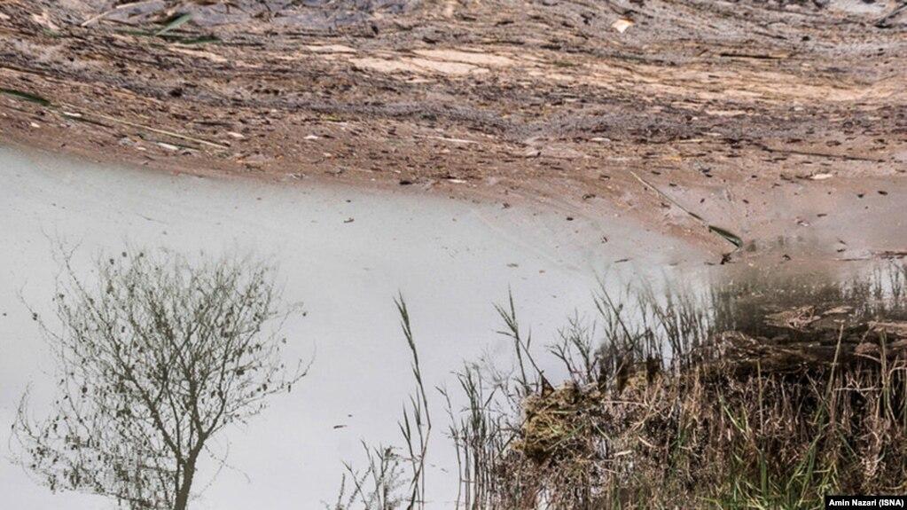 ۴۴ درصد از مساحت کل تالابهای ایران خشک شده است