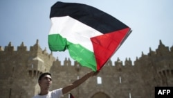 Палестинанын желегин көтөрүп турган жигит.