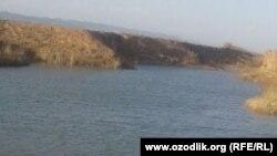 Озеро рыбного хозяйства в Кизирикском районе Сурхандарьинской области, где был обнаружен труп новорожденного ребенка.