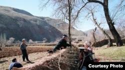 Узбекские фермеры готовятся к весенне-полевым работам. Иллюстративное фото.
