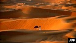 Оазис Аль-Ахса, що розташований у Саудівській Аравії, є найбільшим оазисом в світі
