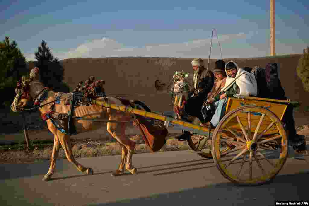 People ride a horse cart along a street in the old quarter of Herat, Afghanistan. (AFP/Hoshang Hashimi)