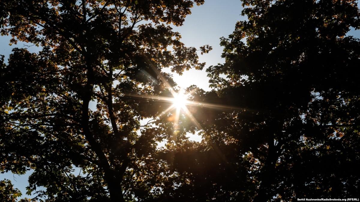 Осень 2019-го в Киеве стала второй самой теплой за 139 лет наблюдений – климатологи