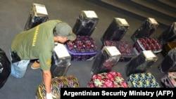 Аргентинадаги Россия элчихонасига қарашли мактабдан топилган 12 та чемоданга 400 кг кокаин юкланган бўлган.