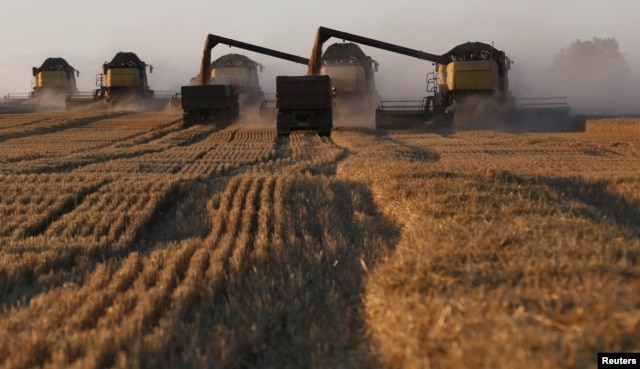 Agriculture is the only sector of the Russian economy that has shown continuous growth, but agriculture's share of Russian GDP is just over 3 percent.