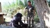 Баткен: кызына өнөрүн үйрөткөн азиз уста