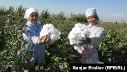 Кыргызстандагы жумушсуздардын көбүн аялдар түзөт.