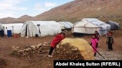 نازحون يزيديون في جبل سنجار، 3 آذار 2015