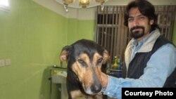 علی طبرزدی، فعال حقوق حیوانات