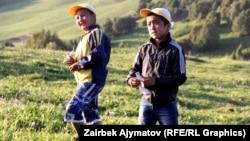 Кыргызстандын жайлоолорунун бириндеги балдар