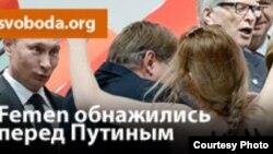 Путин Владимирна дуьхьал бевллера Украинерчу Femen тобан гIодаюккъалц берзина бевлла мехкарий