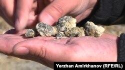 Жоғарғы Қайрақты кен орнындағы руда. 22 қазан, 2019 жыл.