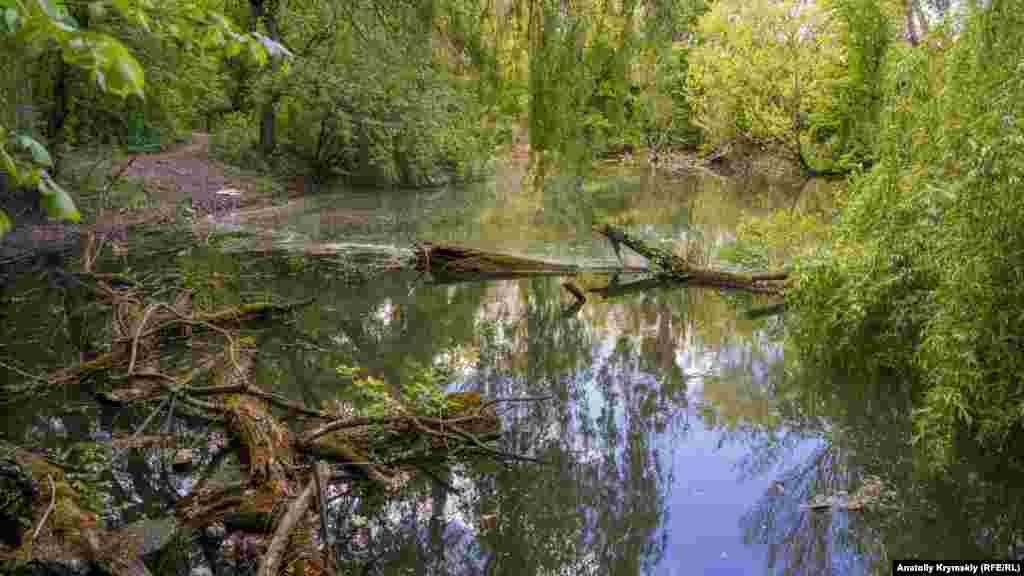 В других же, заброшенных, местах у воды царит запустение. Больше симферопольских озер– в фотогалерее
