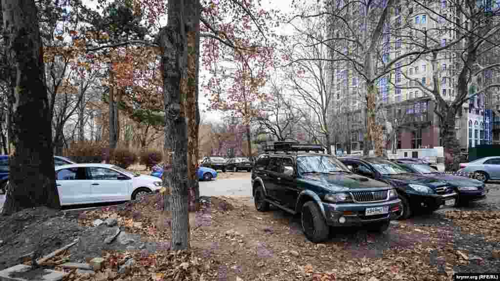 Машины паркуются прямо на земле возле деревьев
