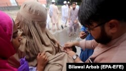 A health worker administers polio vaccine to children during a three-day countrywide vaccination campaign in Peshawar on August 26.