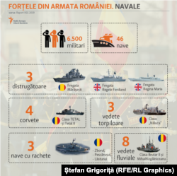 Forțele Navale: distrugătoare, corvete și vedete fluviale