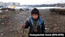 Kabil yaxınlığındakı qaçqın düşərgəsində əfqan uşaq