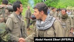 PKK tərəfdarları (Arxiv fotosu)