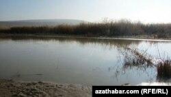 Река Мургаб (архивное фото)