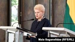 Даля Грибаускайте, Литва президенті