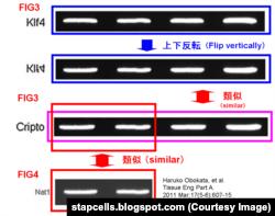Подозрительные фрагменты изображений, обнаруженные японским блогером