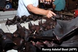 """Летучие мыши на """"мокром рынке"""" в одном из городов индонезийского острова Сулавеси"""