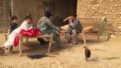 په پاکستان کې د افغان کډوالو ستونزې
