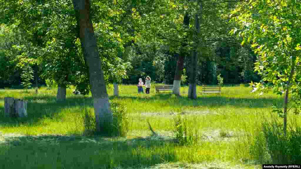 Первые покосы в поселковом парке