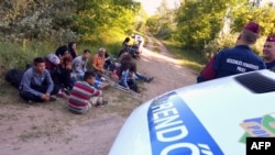 Afghan and Pakistani migrants sit in front of Hungarian police officers at the Hungarian-Serbian border in June.