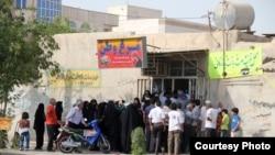 صف مرغ در بوشهر: تصویر از بوشهر نیوز