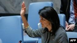 The U.S. Ambassador to the UN Nikki Haley