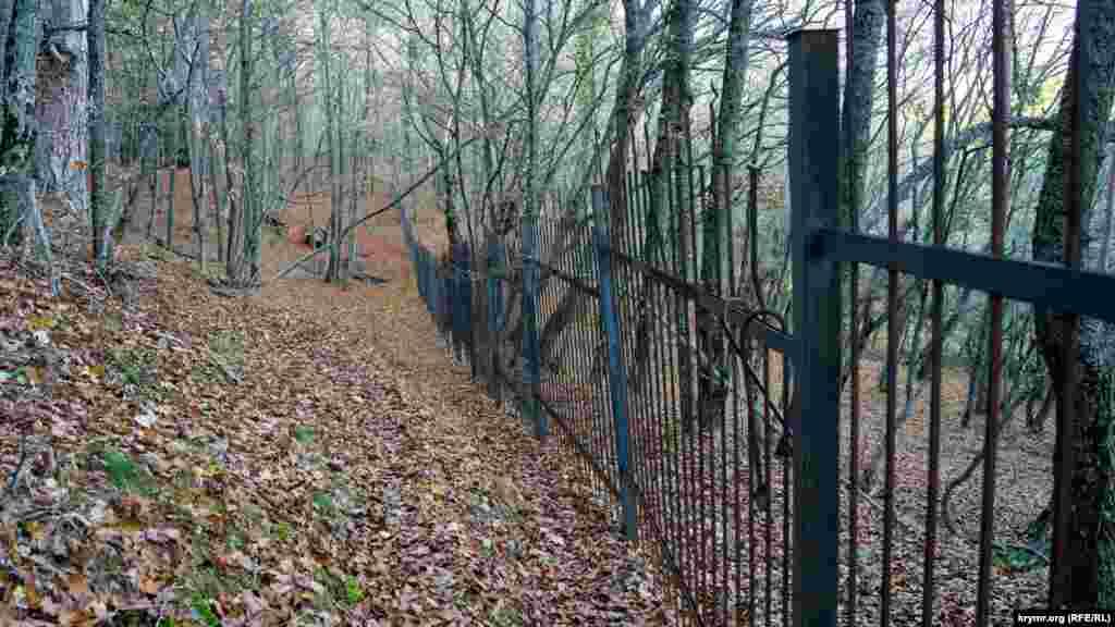 Схили гори перетнуті високими залізними парканами з гострими наконечниками, які тягнуться в незайманому лісі на сотні метрів