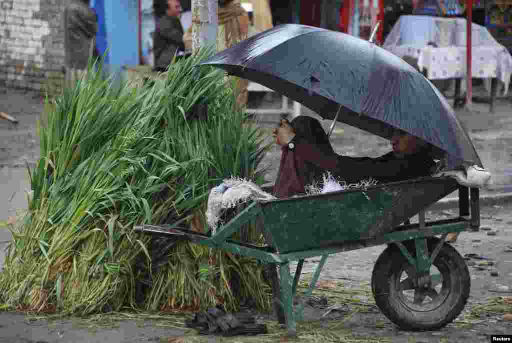 A boy covers under an umbrella as he waits for customers to sell hay in Charsadda, near Peshawar, Pakistan, on March 2. (Reuters/Khuram Parvez)