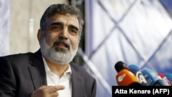 Iran's Atomic Energy Organization (AEOI) spokesman Behrouz Kamalvandi (file photo)