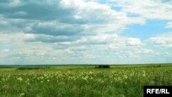 Степ на Луганщині