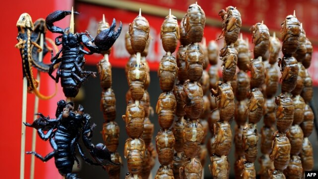 Lizards, scorpions, and bugs are on offer at a food stall on the Wangfujing shopping street in Beijing.