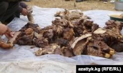 Соғымға сойылған жылқы еті. Орталық Азия. (Көрнекі сурет)