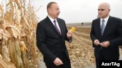 Prezident İlham Əliyev (sağ) və İqtisadi İnkişaf naziri Şahin Mustafayev, 2016