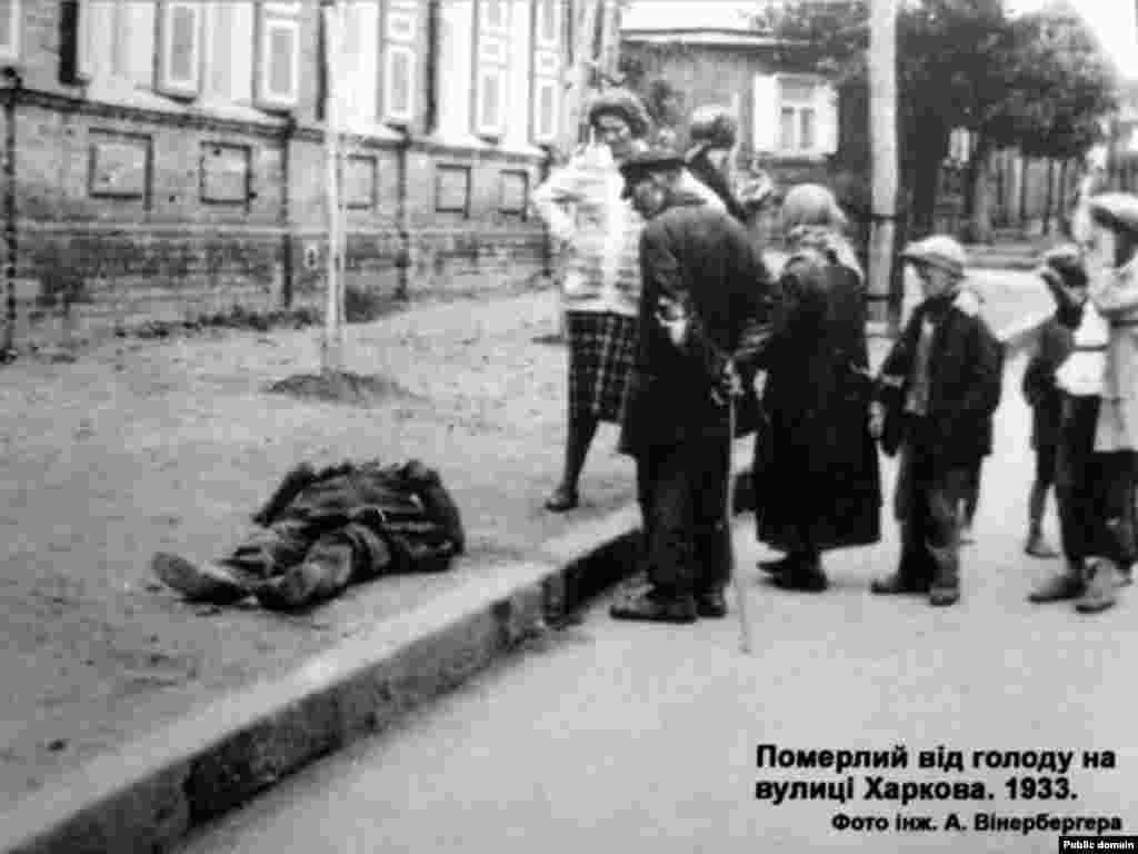 Померлий від голоду на вулиці Харкова, 1933 р. Фото інж. А. Вінерберга - Голодомор, голод, 1933