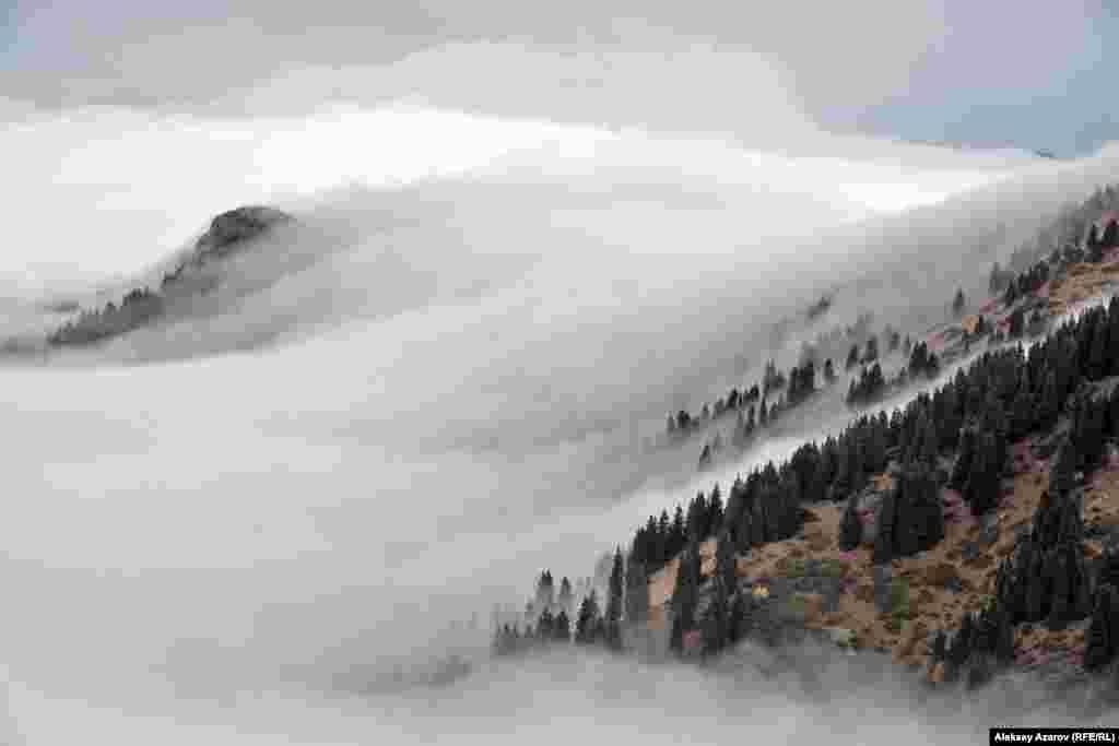 Погодные условия в этих местах не всегда благоприятные. Первый и второй день экспедиции сопровождались дождями, мокрым снегом, сильным ветром. На фото, сделанном по пути к скоплению петроглифов, видно, как облака окутывают горные склоны. Их движение при переваливании через хребты напоминало падение воды в горном водопаде.