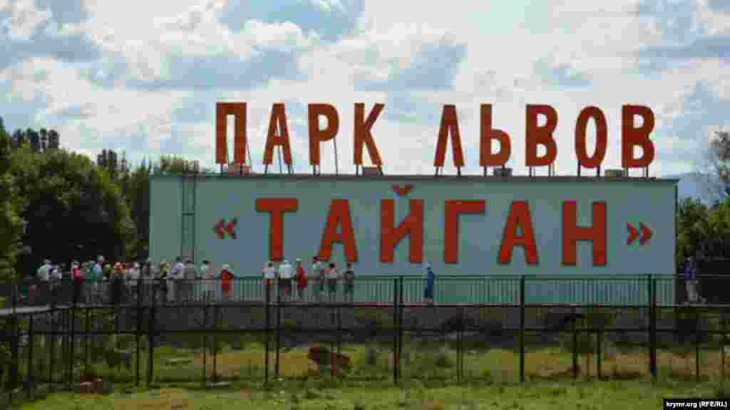 Сафари-парк «Тайган» становится все более популярным местом даже среди знаменитостей