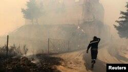 шумски пожари во Алжир