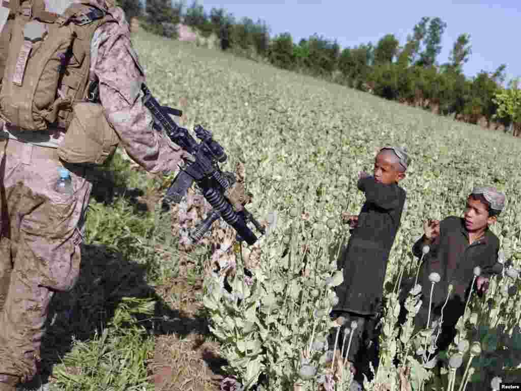 Afghanistan - Susret sa patrolom američkih marinaca u blizini distrikta Marjah