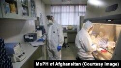 وزارت صحت عامه دومین مرکز تشخیص بیماری کووید-۱۹ در کابل را افتتاح کرد